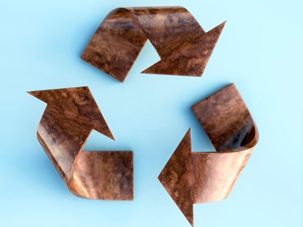 3D Wood Texture Recycle Logo Illustration