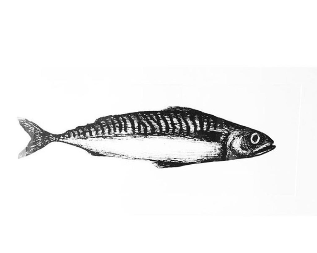 2D Black and White Mackerel Fish Illustration