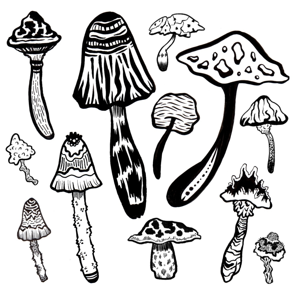2D Black and White Mushroom Illustration