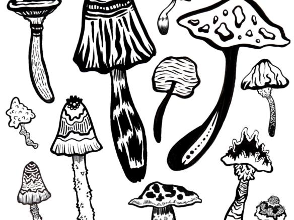 2D Black and White Mushroom Illustration