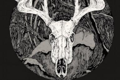 2D Black and White Reindeer Skull Illustration