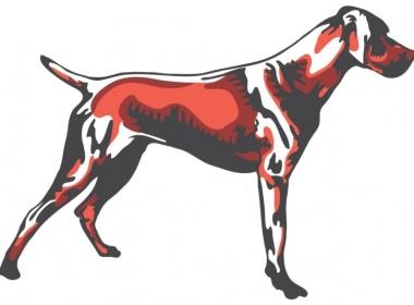 2D Graphic Graffiti Style Hound Dog Illustration