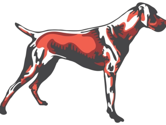 2D Graphic Graffiti Style Hound Dog Illustration