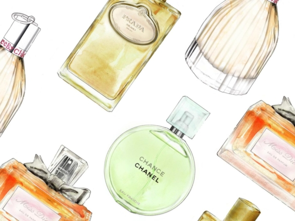 2D Perfume Bottles Beauty Product Illustration