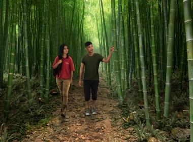 3D Bamboo Environment Illustration Thumbnail
