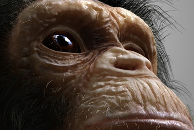 3D Chimp Character Illustration Thumbnail