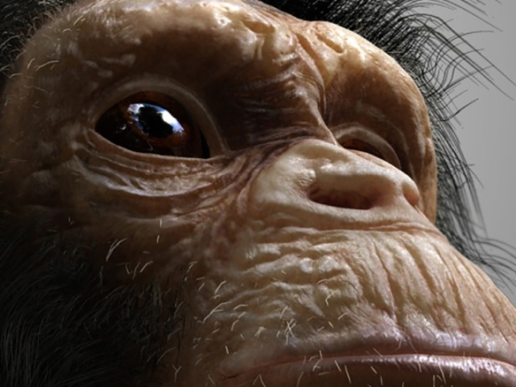 3D Chimp Character Illustration Thumbnail