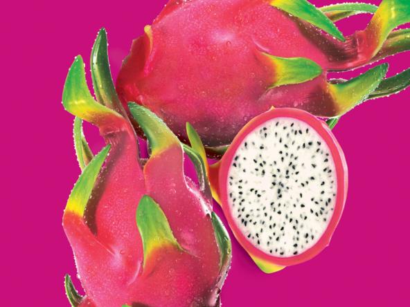 3D Dragon Fruit Illustration Thumbnail