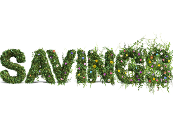 3D Savings Flower Text Photo Retouch Illustration Thumbnail