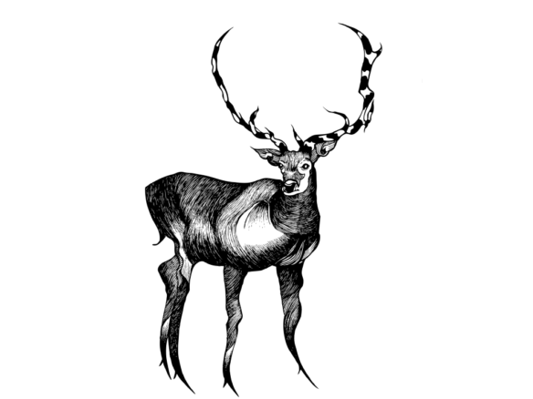 2D Black and White Deer Illustration Image