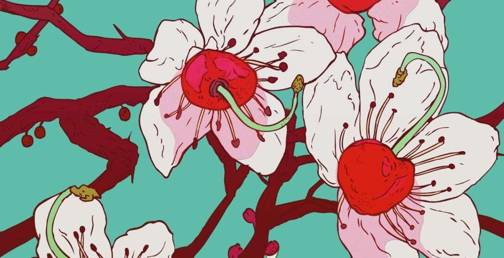 2D Graphic Cherry Blossoms Flowers Digital Illustration Image