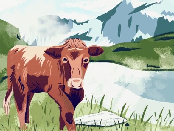 2D Graphic Swiss Cow Digital Illustration Image