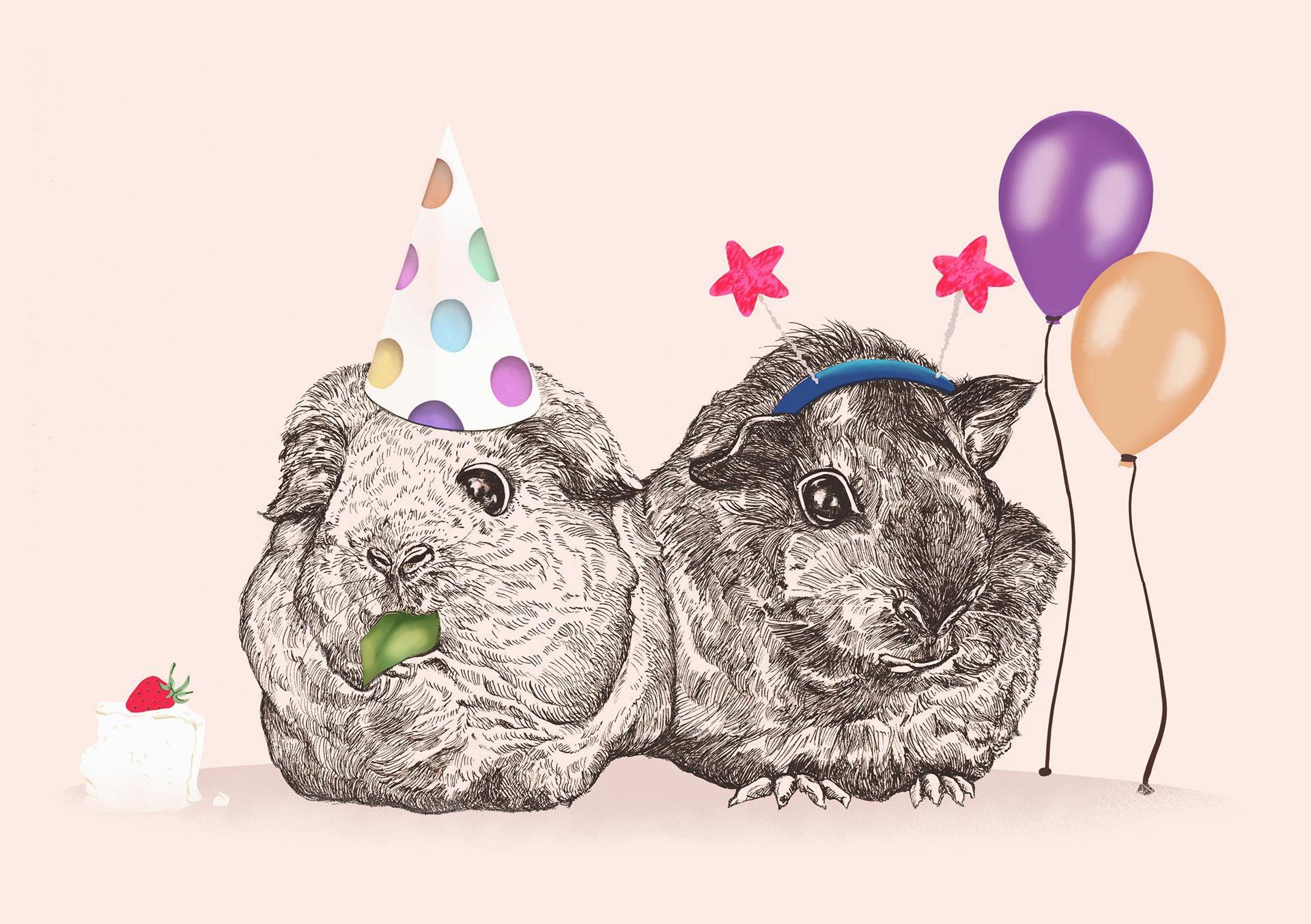 2D Guinea Pig Party Illustration