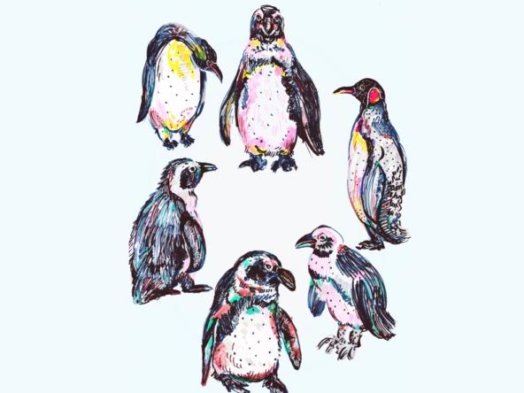 2D Penguins Illustration