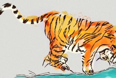 2D Tiger Drinking Illustration Image