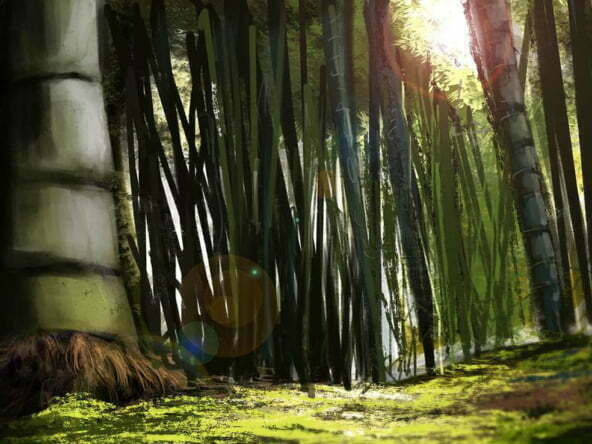2D Bamboo Forest Environment Illustration Thumbnail