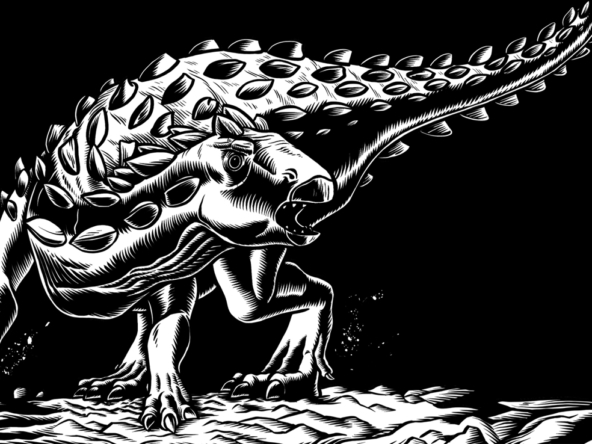 2D Black and White Ankilosaurus Dinosaur Illustration Thumbnail