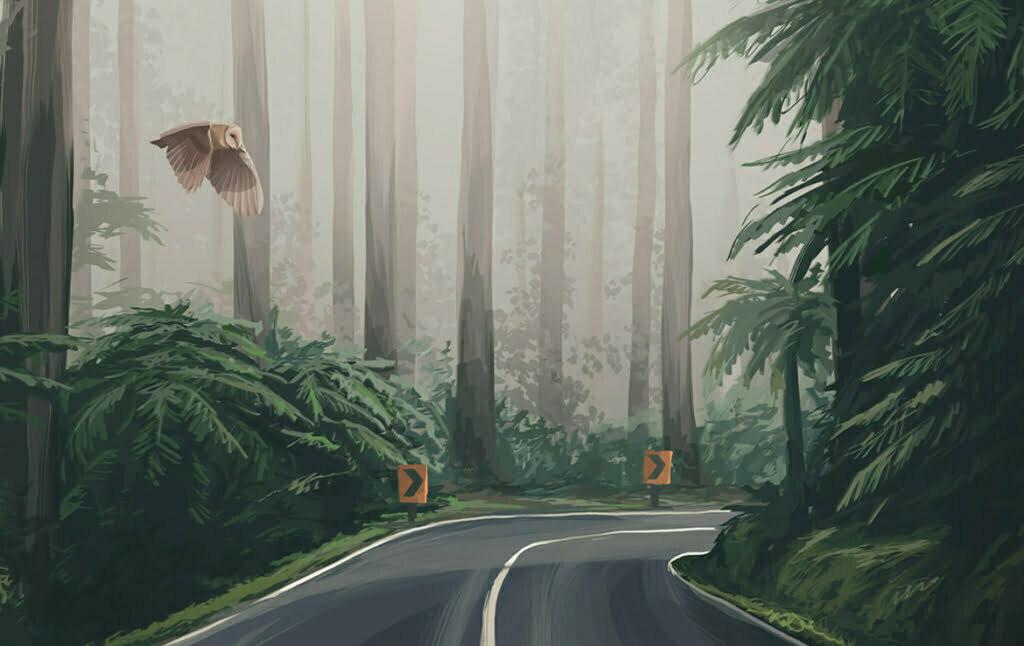 2D Forrest Road Environment Illustration Thumbnail