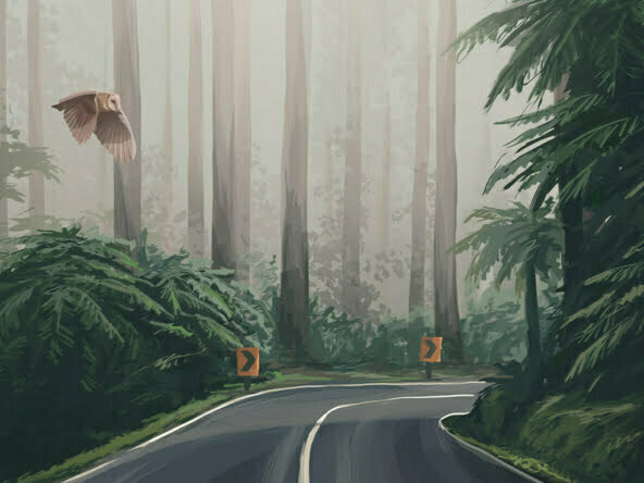 2D Forrest Road Environment Illustration Thumbnail