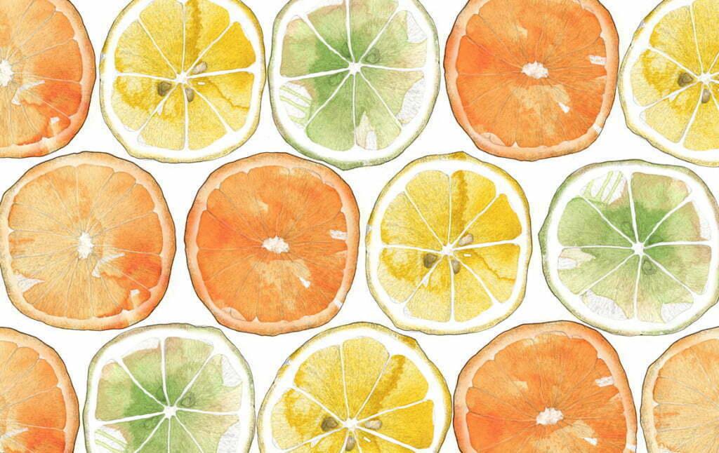 2D Orange Print Food Illustration Thumbnail