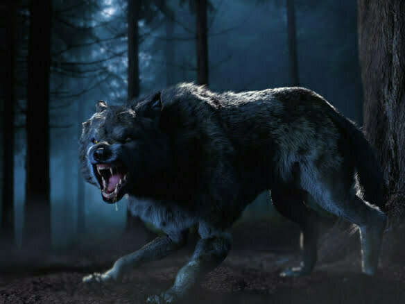 3D Howling Wolf Creature Illustration Thumbnail