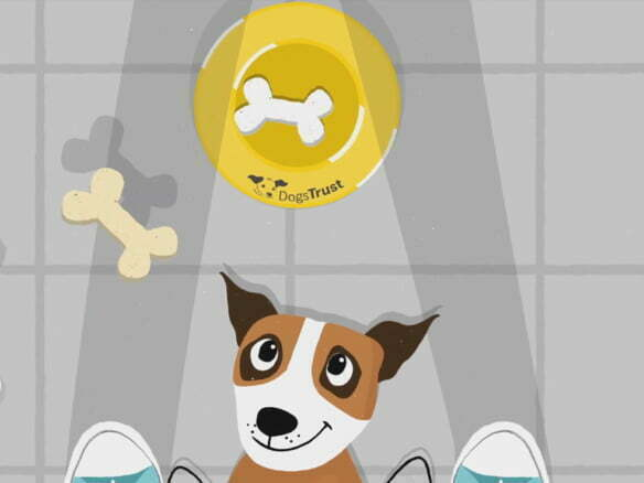 2D animation dogs trust character animated ex-plainer video