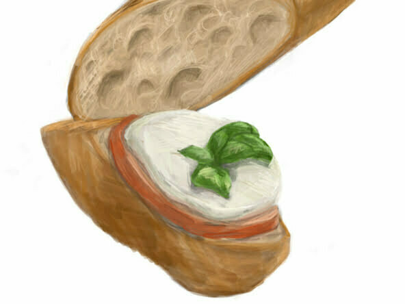 2d french baguette and brie food illustration
