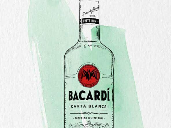 2D Brands Illustration Bottle Drinks Bacardí